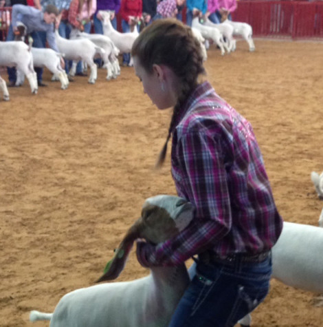 FFA judging team continues to advance