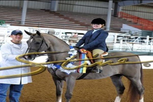Peyton Hardie on her horse after a competition.