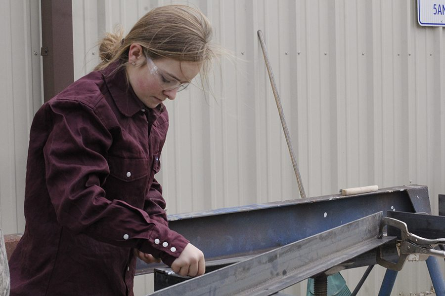 Laramie+Wedemeyer+helps+build+a+trailer.+She+worked+with+other+FFA+members+throughout+the+day.