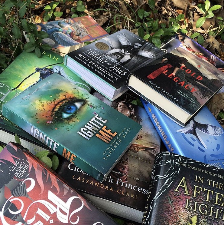 Junior Bailey Spencer's collection of books lays in a pile on the dirt ground. Ever since her dad bought a 500 paged fantasy novel, she has been obsessed with books.