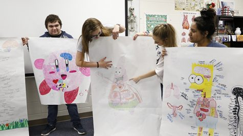 Health Science Class Creates Anatomy Posters