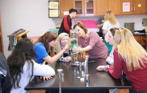 Science Classes Create Aquarium Ecosystems