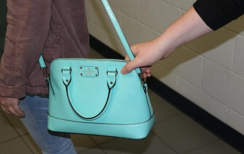 The mugger stole the purse of the woman. This is not an actual picture from the event.