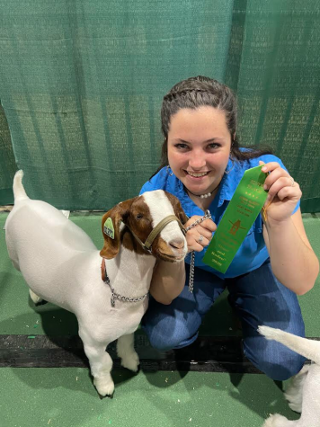 Sophomore Brooklyn Gilleland poses with her goat for a picture. This was before the Houston FFA Livestock Show was canceled.