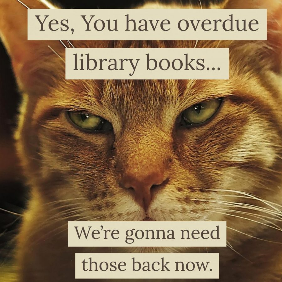 Library Enacts New Policy Regarding Overdue Books