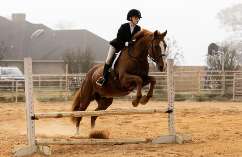 Two Freshman Compete in Equestrian Events